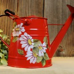 Daisies Watering Can